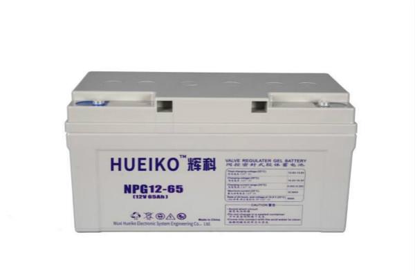 雷竞技官网手机版胶体蓄电池NPG12-65
